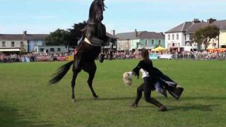 Hunt and Stunts - jumping, Amazing Horse Freestyle